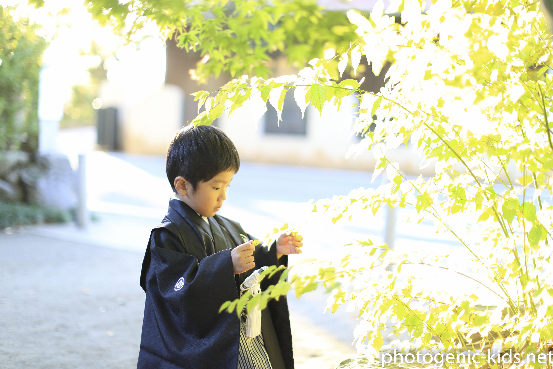 【寒川神社(神奈川県高座郡)】七五三出張撮影をさせていただきました。