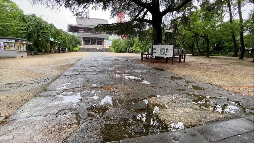 雨の増上寺で出張撮影